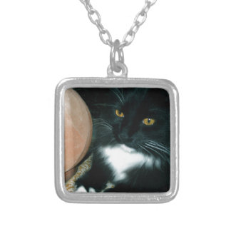 Salt Globe and Cat Psychic - Photograph Pendants