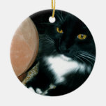 Salt Globe and Cat Psychic - Photograph Double-Sided Ceramic Round Christmas Ornament
