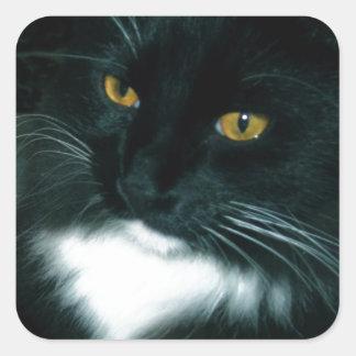 Salt Globe and Cat Psychic - Photograph Square Sticker