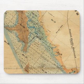 Salt marsh and tide lands map mouse pad