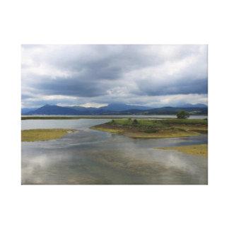 Salt marshes of Santoña Canvas Print