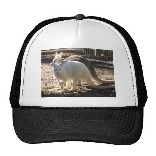 Salt & Pepper Wallaby's Trucker Hat