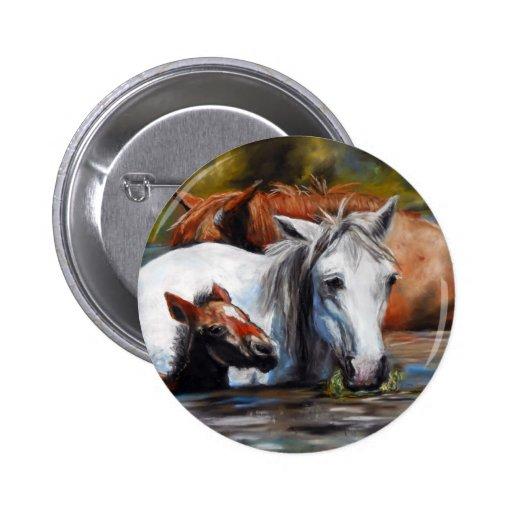 Salt River Foal 2 Inch Round Button