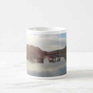 Salt River Wild Horses Arizona Mug