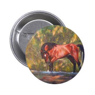 Salt River Wild Stallion Tango Pinback Button