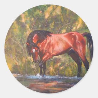 Salt River Wild Stallion Tango Round Stickers