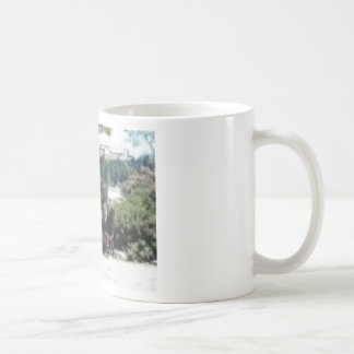 Salt Spring Island2 Coffee Mugs