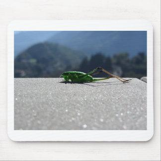 Saltamontes contra el sol alfombrillas de ratón