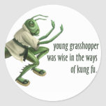 Saltamontes divertido de Kung Fu Pegatinas Redondas
