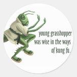 Saltamontes divertido de Kung Fu Pegatina Redonda
