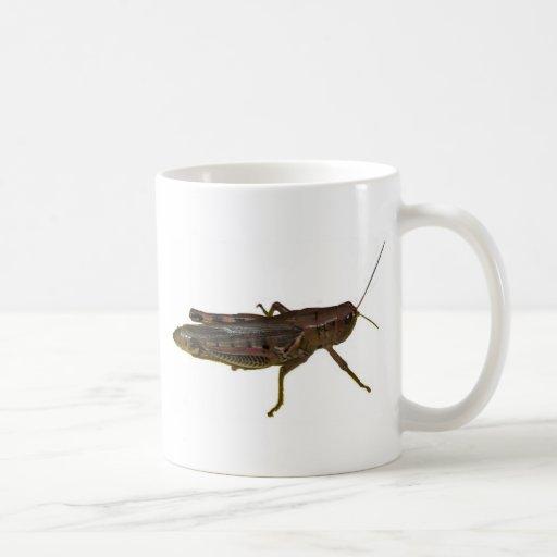 Saltamontes gigante taza