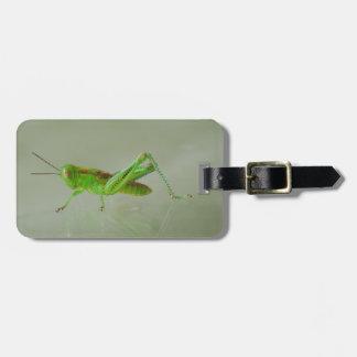 Saltamontes verde etiqueta para equipaje