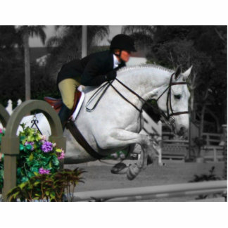 Salto árabe del caballo esculturas fotograficas