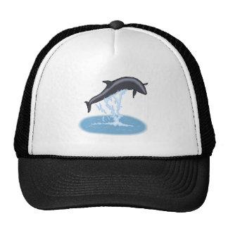 Salto de la ballena experimental gorras
