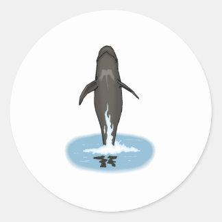 Salto de la ballena experimental pegatina redonda