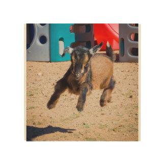 Salto de la cabra del bebé impresiones en madera