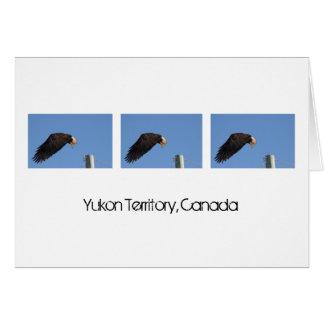 Salto de la fe; Recuerdo del territorio del Yukón Tarjeta
