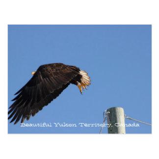Salto de la fe; Recuerdo del territorio del Yukón Postal