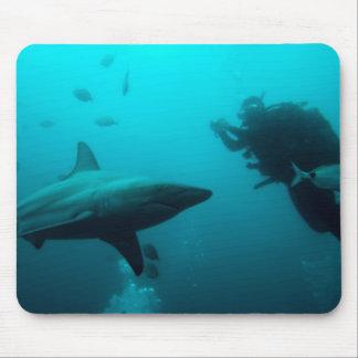 Salto de la jaula con los tiburones de Blacktip Alfombrilla De Ratón