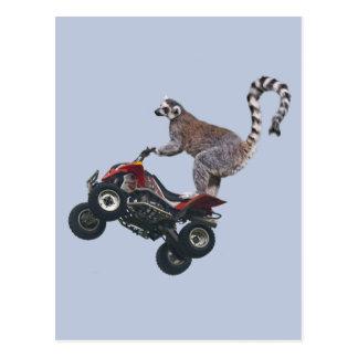 Salto de la postal del Lemur