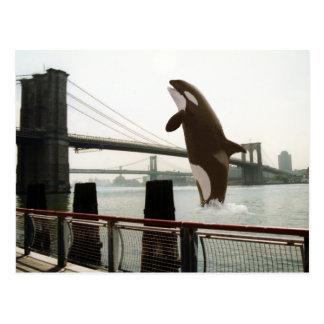 Salto de la postal del puente de Brooklyn