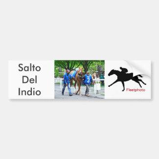 Salto Del Indio Bumper Sticker