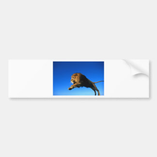 Salto del león y cielo azul etiqueta de parachoque