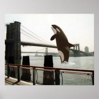 Salto del poster del puente de Brooklyn