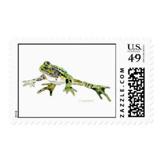 Salto del sello de la rana de leopardo