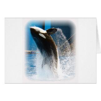 salto del shamu tarjeta de felicitación
