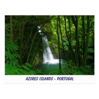 Salto do Prego, Azores Postcard