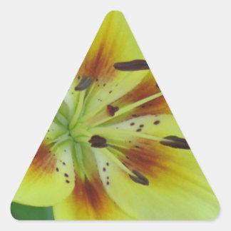 Salto en verano pegatina triangular