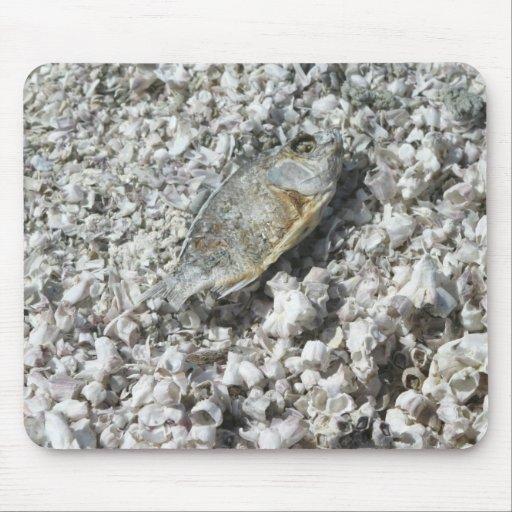 Salton Sea Mouse Pad