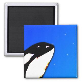 Saltos del espía de la orca de la orca en un cielo imán cuadrado