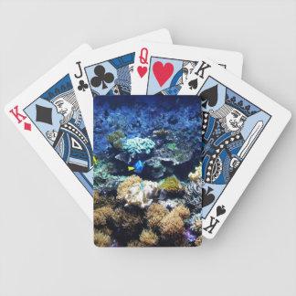 Saltwater aquarium deck of playing cards