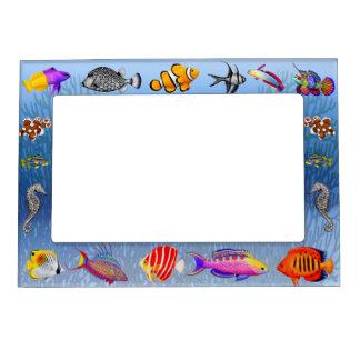 Saltwater Coral Reef Aquarium Fish Magnetic Frame