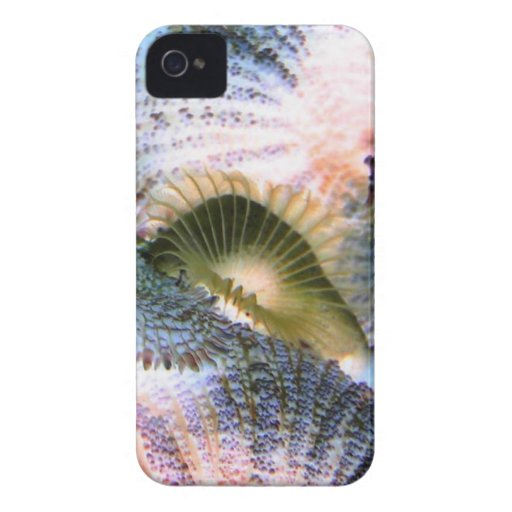 Saltwater corals with inverted colors iPhone 4 cases