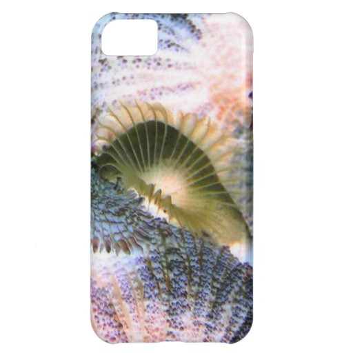 Saltwater corals with inverted colors cover for iPhone 5C