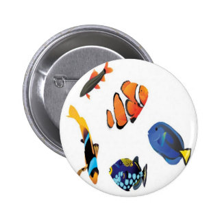 Saltwater fish design buttons