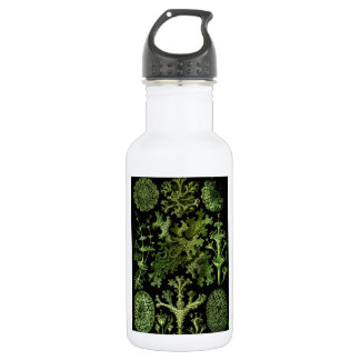 "Saltwater Plants""Dessins sous Marin Plante"" Stainless Steel Water Bottle"