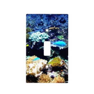 Saltwater tank 1 lightswitch cover