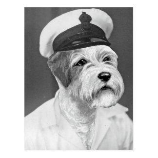 Salty Sea Dog Sealyham Sailor gift Postcard