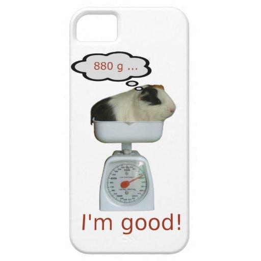 Salud del conejillo de Indias iPhone 5 Carcasas