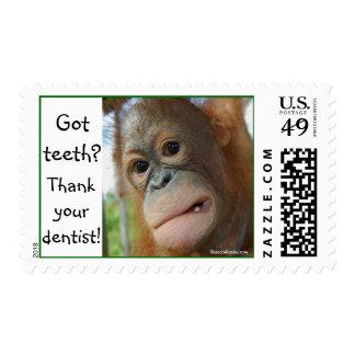 Salud dental del dentista divertido sello