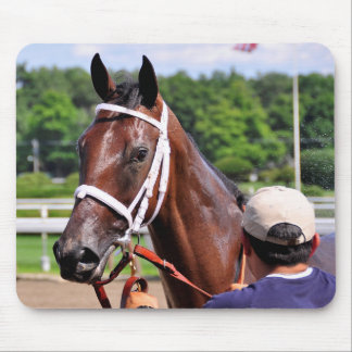 Saluda, 2 year old filly by Congaree Mouse Pad