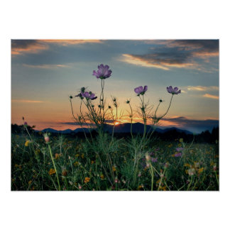 saluda range sunset posters