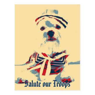 Salude a nuestras tropas (la esperanza) postal