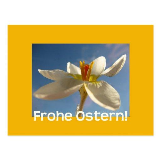 Saludo blanco de pascua del azafrán - alemán postal