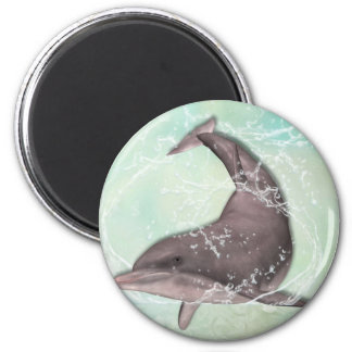 Saludo del delfín imán redondo 5 cm