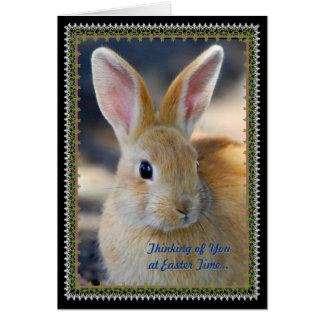 Saludo del día de fiesta de Pascua Tarjeta De Felicitación